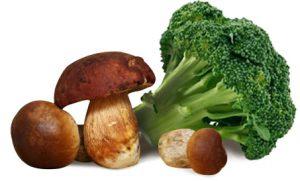 broccoli separatore di pagina menu